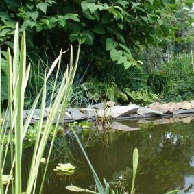 Каменистый берег искусственного пруда
