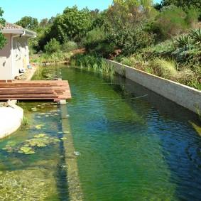 Большой пруд с зоной для купания