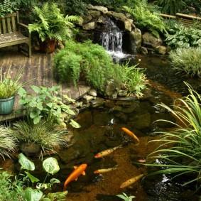 Искусственный водоем с живыми рыбками