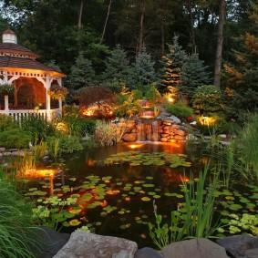 Красивый пруд в вечернее время суток