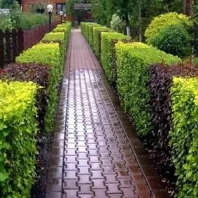 Садовая дорожка из клинкерной плитки