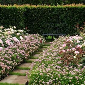 Кованная скамейка в саду регулярного стиля