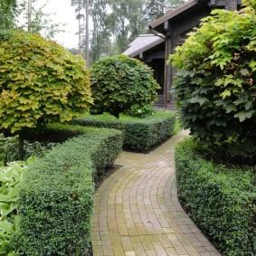 аккуратный сад с красивыми бордюрами