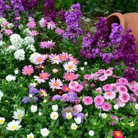 Садовая композиция с цветами и глиняным кувшином
