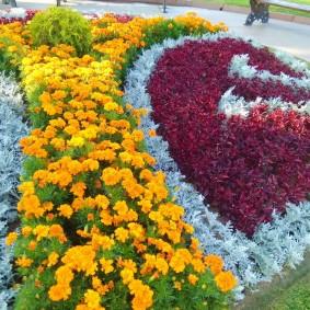 Цветочная композиция в городском парке