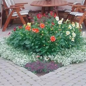 Клумба с цветами на площадке для отдыха