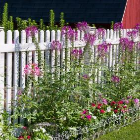 Деревянный забор в ландшафте загородного участка