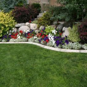 Зеленый газон перед садовым цветником