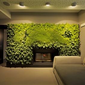 Вертикальное озеленение квартиры в кирпичном доме