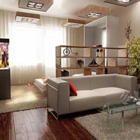 Невысокий стеллаж в однокомнатной квартире
