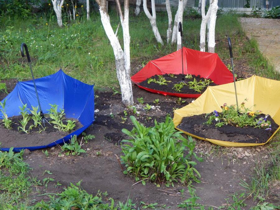 Садовые клумбы из старых зонтов