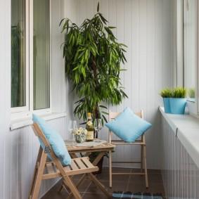 зеленые растения на стене балкона