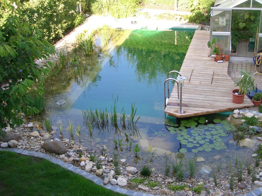 Искусственный пруд с местом для купания