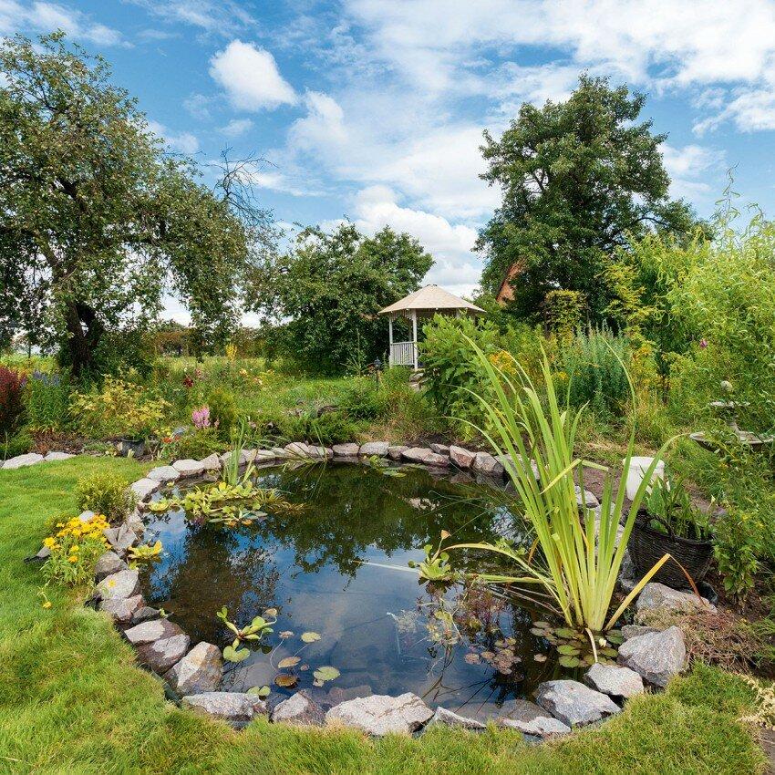 Садовый пруд с округлыми формами