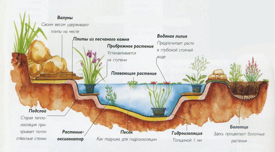 Схема искусственного водоема для дачного участка