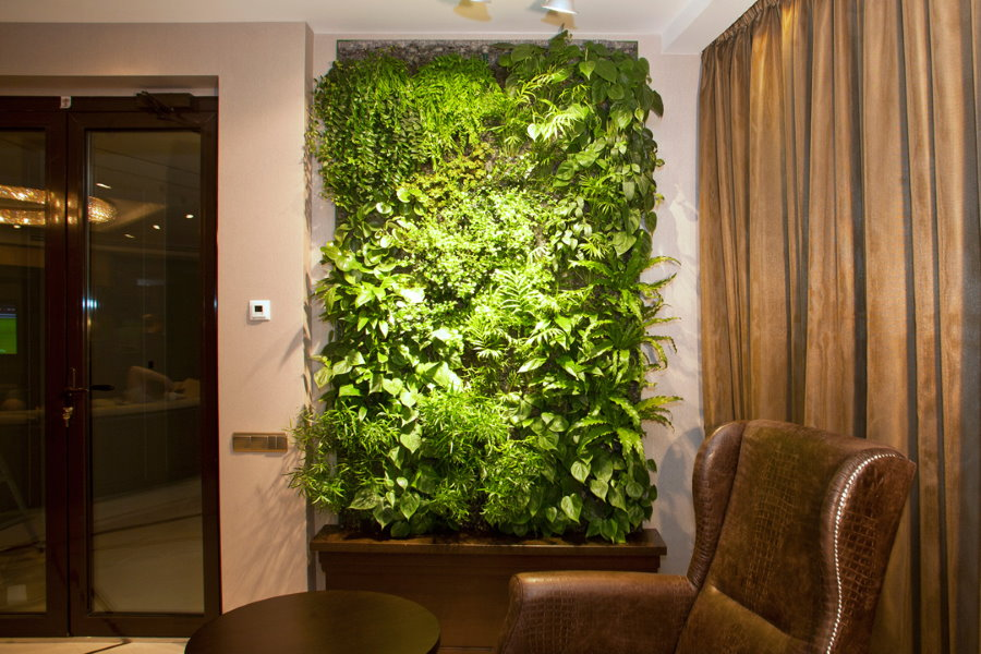 Живая стена в интерьере современной квартиры
